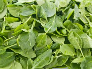 Leafy Green Spinach for Macular Degeneration | Burlington County Eye Physicians
