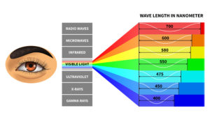 Visible Light Spectrum | Visible Blue Light | The Eye Professionals